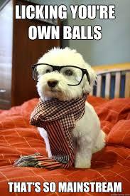 balls lick neuter